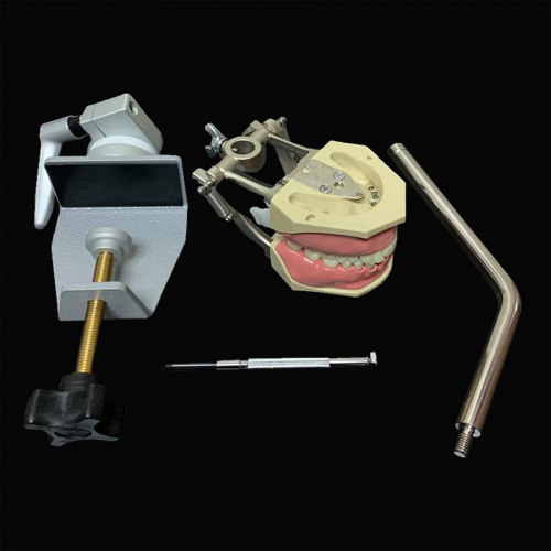 Student Dental Education Kit